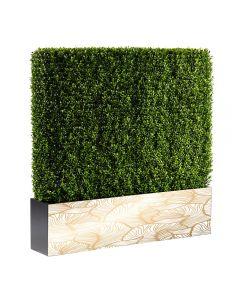 Boxwood Hedge 4' Logo, Long Side
