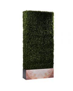 Boxwood Hedge 7' Logo, Long Side