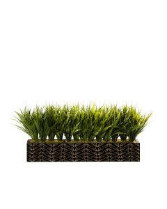 Grass Centerpiece Logo, All Sides