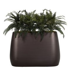 Planter Divider w/ Ferns